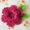 Florile crosetate