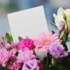 7 motive de a oferi flori in 2018