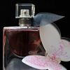 Exemple de parfumuri de nisa