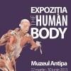 La Antipa, The Human Body Exposition, intre stiinta si ignoranta