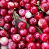 Merisoarele confiate, vitamine in cea mai pura forma a lor