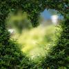 4 lucruri care transforma incompatibilul in irezistibil