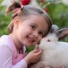 10 lucruri care te ajuta sa cresti un copil sanatos emotional