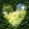 Peste toate este iubirea