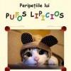 pufos-pisici