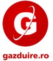 detalii SC GAZDUIRE WEB SRL